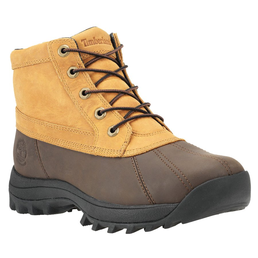 Timberland Men's Canard Leather Boots $130